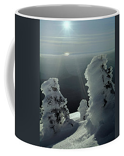 2m4415 A Ice Covered Trees Over Puget Sound Coffee Mug