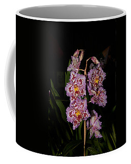Cattleya Style Orchids Coffee Mug