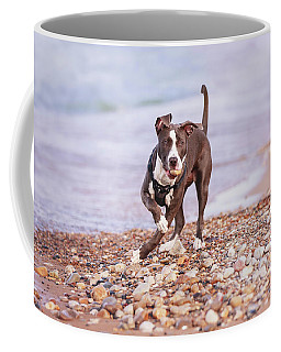 Coffee Mug featuring the photograph American Pitbull Terrier by Peter Lakomy