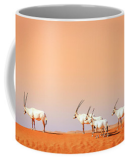 Coffee Mug featuring the photograph Arabian Oryx by Alexey Stiop