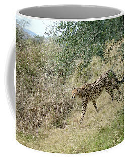 Coffee Mug featuring the photograph Descent by Fraida Gutovich