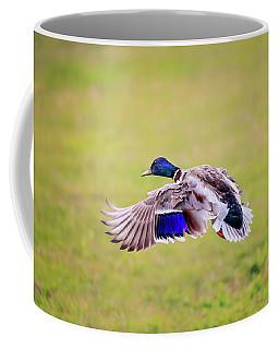 Duck-drake Coffee Mug