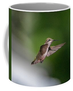 Female Ruby Throated Hummingbird Coffee Mug