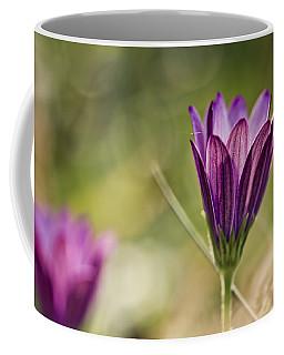 Flower On Summer Meadow Coffee Mug