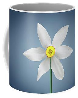 Coffee Mug featuring the photograph Flower Paradise by Bess Hamiti