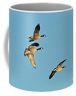 3 Geese In Flight Coffee Mug