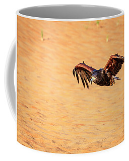 Coffee Mug featuring the photograph Harris Hawk by Alexey Stiop