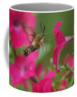 Hummer Moth Coffee Mug