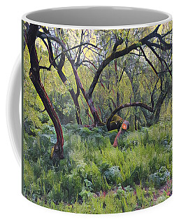 Morning Walk Trees Coffee Mug