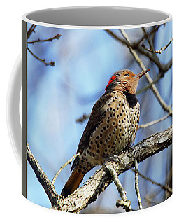 Coffee Mug featuring the photograph Northern Flicker Woodpecker by Robert L Jackson