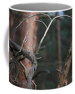 Pine Twigs Coffee Mug by Dariusz Gudowicz
