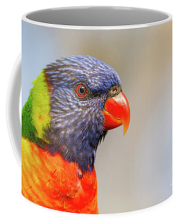 Rainbow Lorikeet Coffee Mug by Craig Dingle