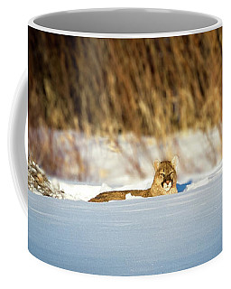 3 Waters Ghost  Coffee Mug