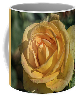 Yellow Rose Coffee Mug by Jane Luxton
