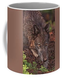 Zaltana  Coffee Mug