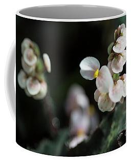 Fine Art  Coffee Mug