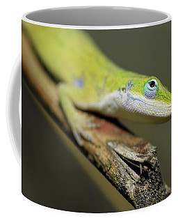 Anole Coffee Mug