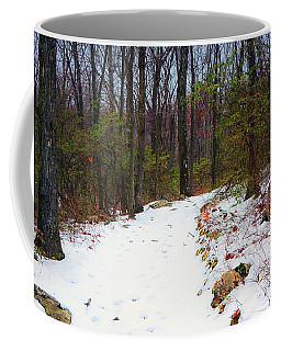At Harriman State Park Coffee Mug