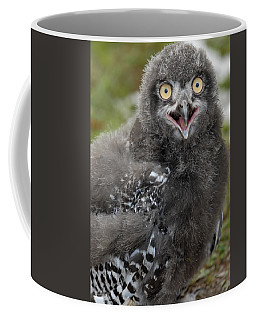 Baby Snowy Owl Coffee Mug