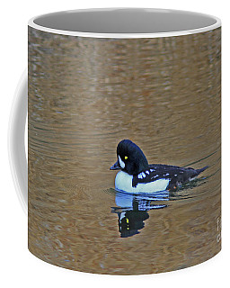 Barrow's Goldeneye Coffee Mug