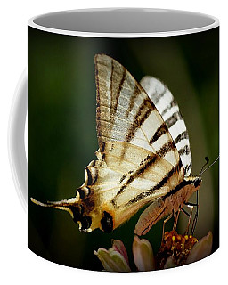 Butterfly Coffee Mug by Sylvie Leandre