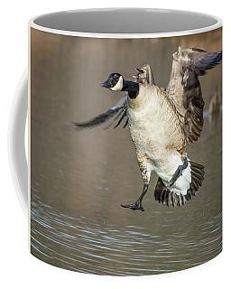 Canada Goose Coffee Mug by Tam Ryan