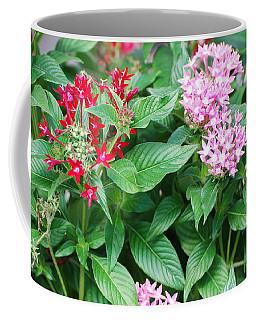 Coffee Mug featuring the photograph Flowers by Rob Hans