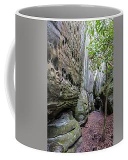 Great Virginia Channels  Coffee Mug by Kevin Blackburn
