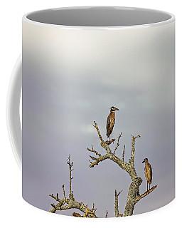 Green Heron Coffee Mug by Peter Lakomy
