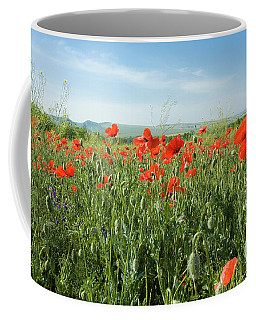 Meadow With Red Poppies Coffee Mug by Irina Afonskaya