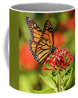 Monarch Coffee Mug by Jane Luxton