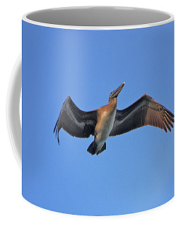 Coffee Mug featuring the photograph 4- Pelican by Joseph Keane