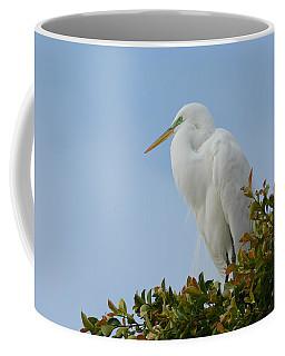 Coffee Mug featuring the photograph Poised by Fraida Gutovich