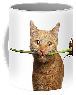 Portrait Of Ginger Cat Brought Rose As A Gift Coffee Mug