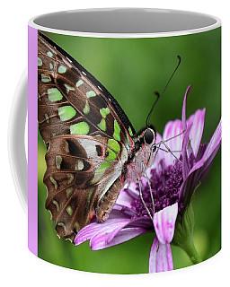Tailed Jay Coffee Mug by Ronda Ryan
