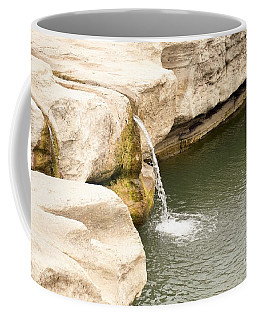 Coffee Mug featuring the photograph Texas - Mckinney Falls State Park  by Ray Shrewsberry