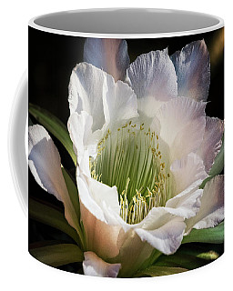 Coffee Mug featuring the photograph The Beauty Of White  by Saija Lehtonen