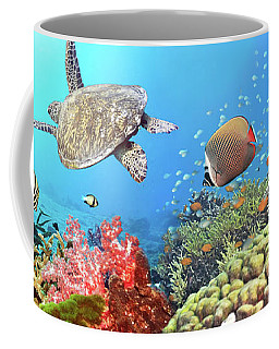 Underwater Panorama Coffee Mug