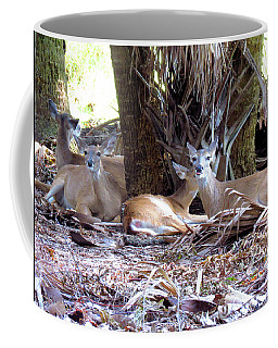 4 Wild Deer Coffee Mug by Rosalie Scanlon