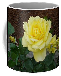 4 Yellow Roses Coffee Mug by Shirley Heyn