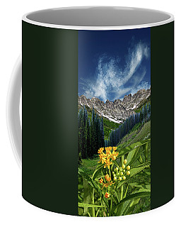 Coffee Mug featuring the photograph 4415 by Peter Holme III