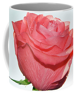 Coffee Mug featuring the photograph Pink Rose by Elvira Ladocki