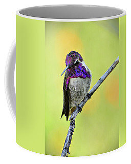 Costas Hummingbird  Coffee Mug by Saija  Lehtonen