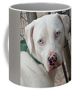 Dog At Satchel's Last Resort Coffee Mug