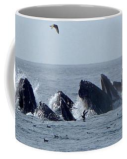 5 Humpbacks Lunge Feeding  Coffee Mug