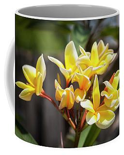 Plumeria Frangipani Hawaiian Flower  Coffee Mug