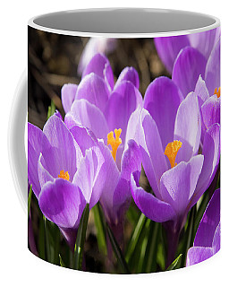 Purple Crocuses Coffee Mug by Irina Afonskaya