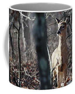 White Tailed Deer Shirley New York Coffee Mug