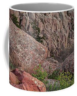 Coffee Mug featuring the photograph Wichita Mountains by Iris Greenwell