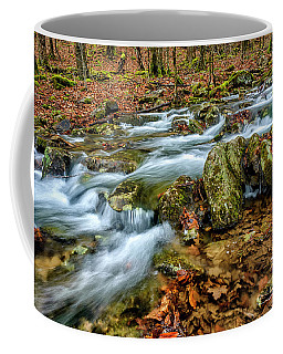 Coffee Mug featuring the photograph Aldrich Branch Monongahela National Forest by Thomas R Fletcher
